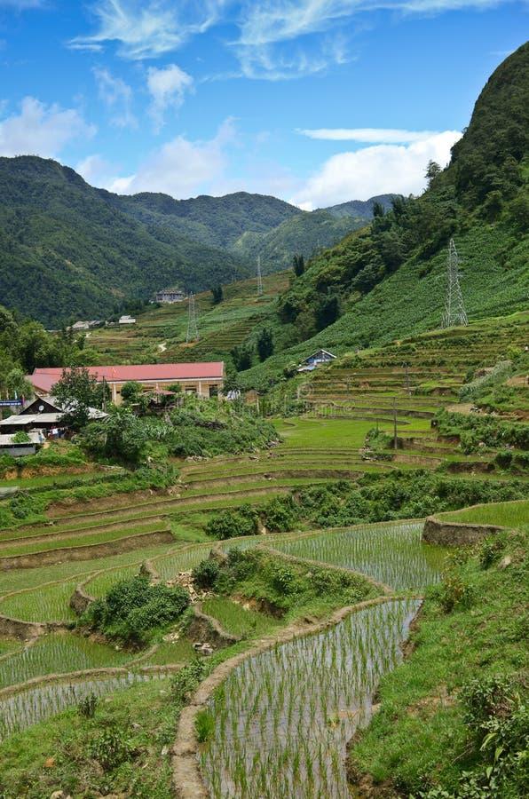 North Vietnam Landscape. Green mountains and rice fields near Sapa, Vietnam royalty free stock photos