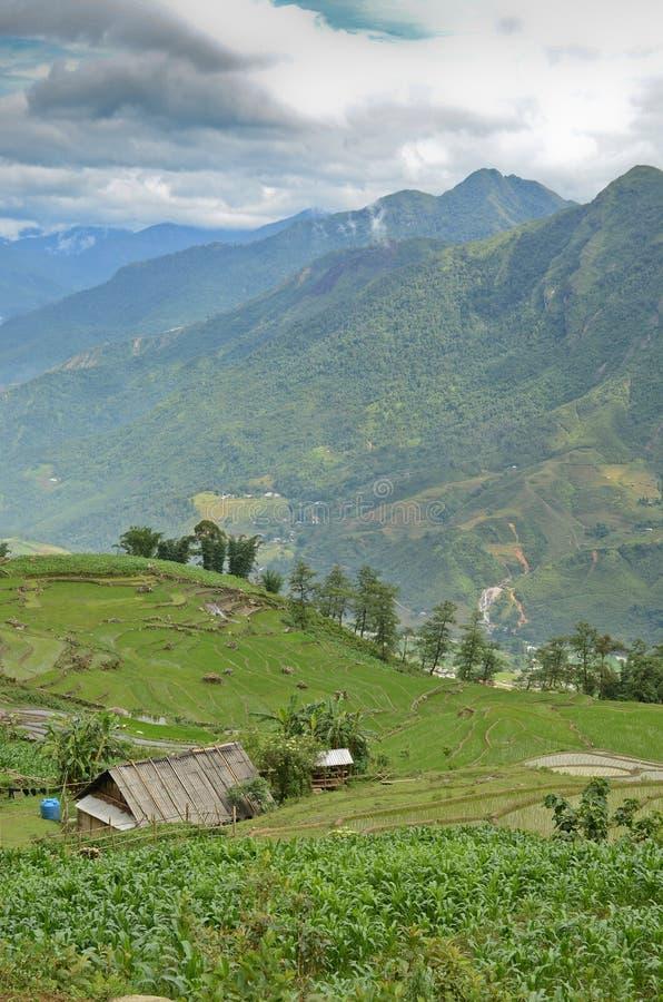North Vietnam Landscape. Green mountains and rice fields near Sapa, Vietnam royalty free stock photo