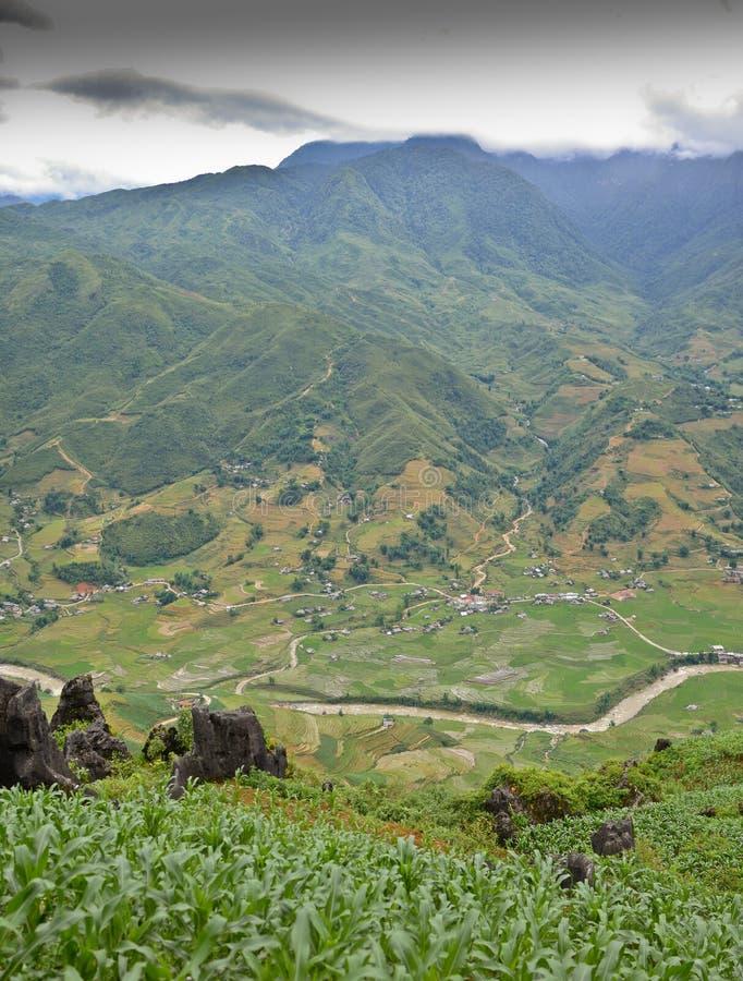 North Vietnam Landscape. Green mountains and rice fields near Sapa, Vietnam stock photography