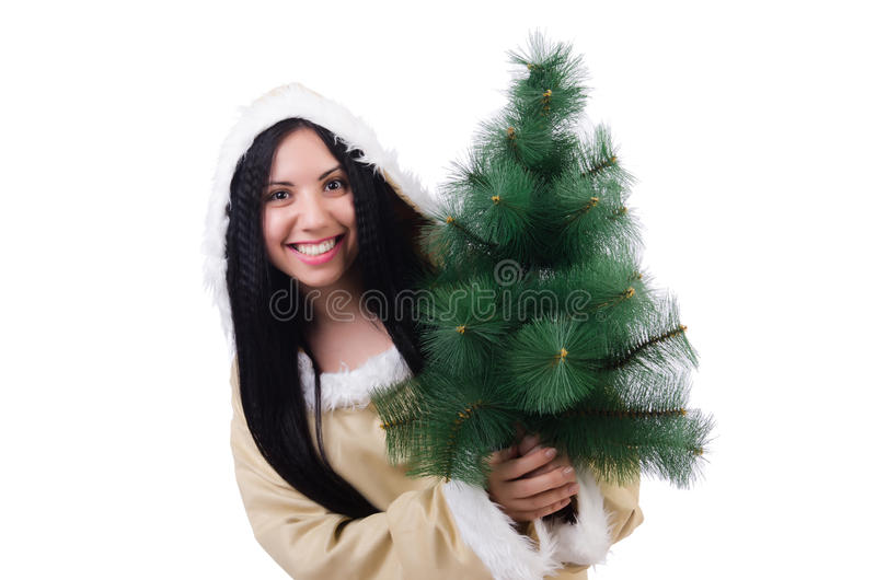 North woman with christmas tree isolated. On white royalty free stock photos