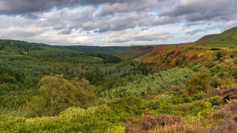 North York Moors landscape, England, UK royalty free stock photo