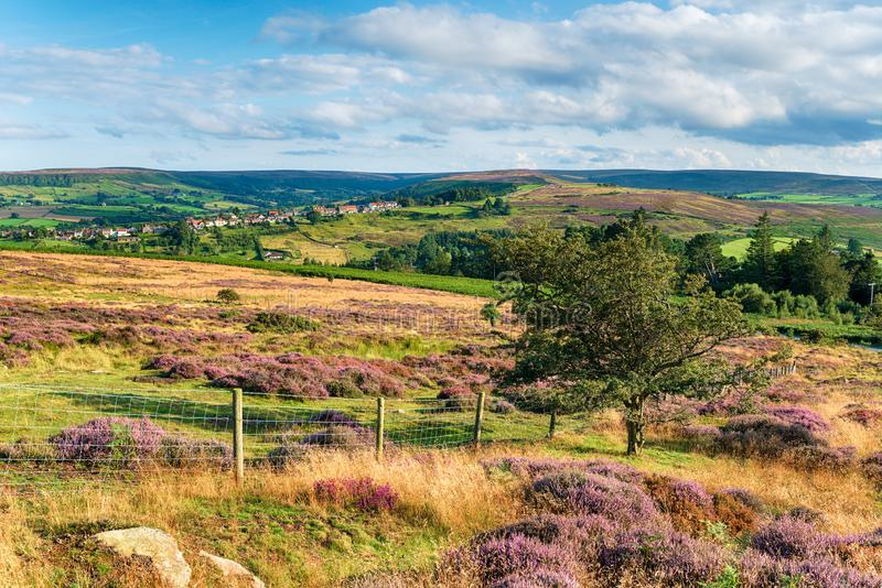 North York Moors National Park in Yorkshire, looking out the village of Castleton. Summer in the North York Moors National Park in Yorkshire, looking out across stock photos