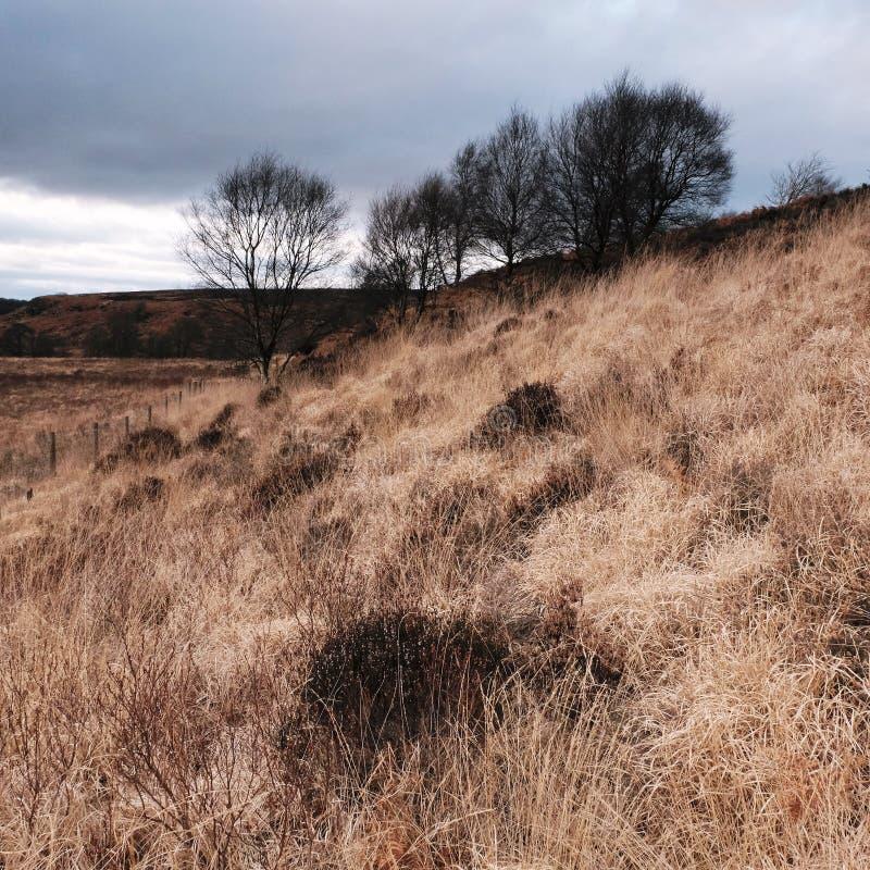 North Yorkshire amarre l'Angleterre photographie stock libre de droits