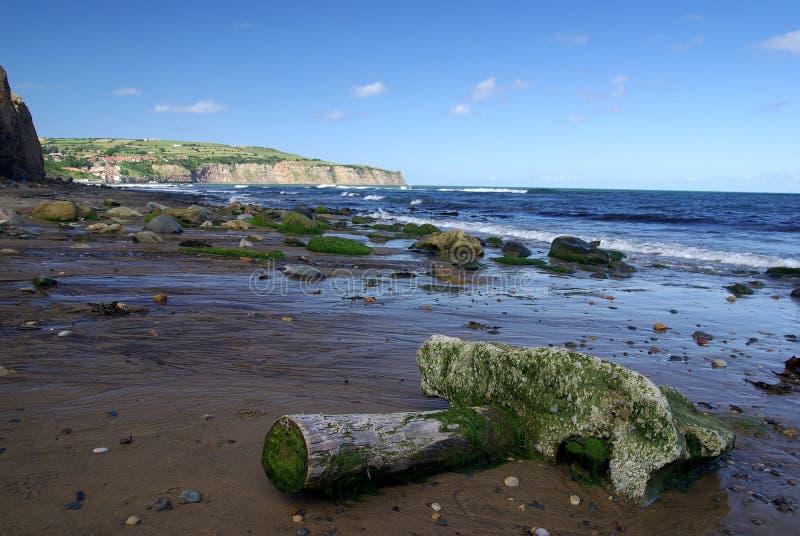 North Yorkshire attracca la costa immagini stock libere da diritti