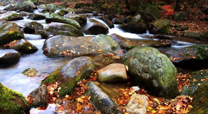 Northeast China nobody Valley beautiful autumn scenery stock photo