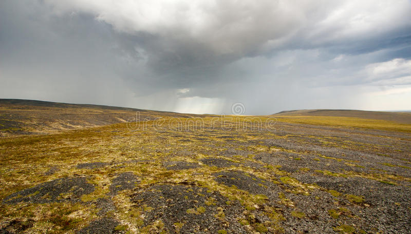 Tundra landscape royalty free stock photography