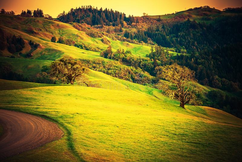 Northern California Countryside. Northern California Landscape. Summer in Redwood Area Close to Eureka, Humboldt County California, United States. California stock photo