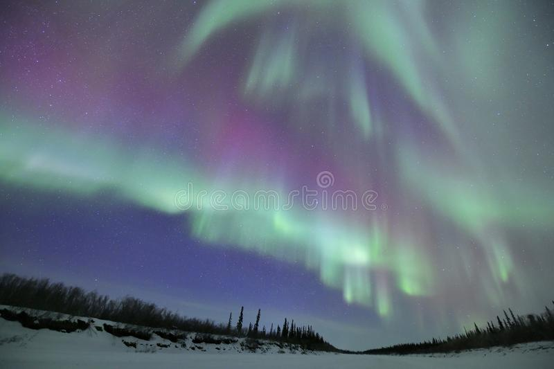 Colorful Northern lights are dancing in the sky royalty free stock images