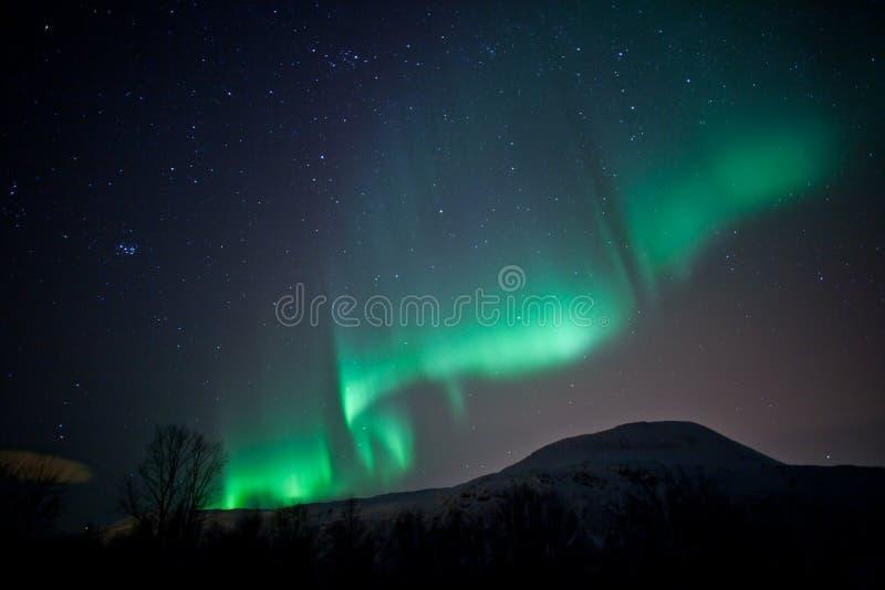 Northern lights (Aurora Borealis) curtains royalty free stock image