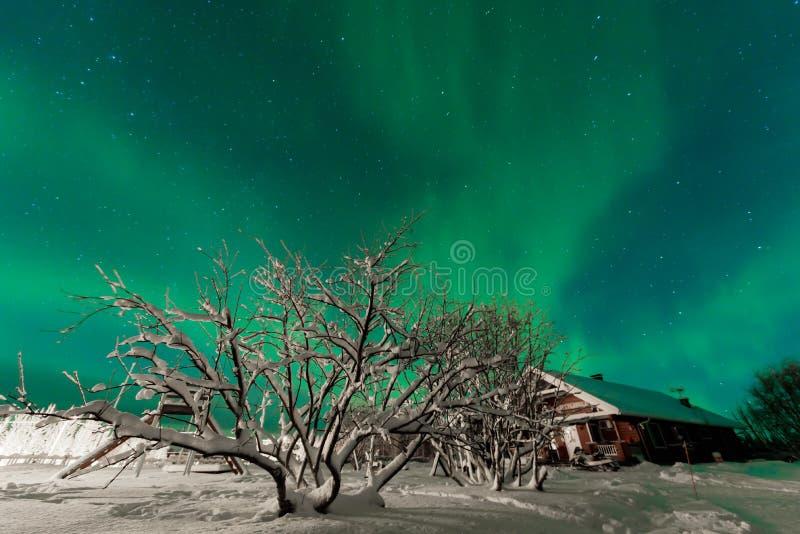 The northern lights Aurora Borealis at Kuukiuru village lake in Lapland, Finland stock image