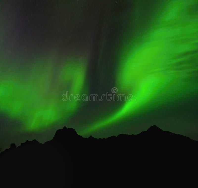 Lofoten, Aurora Borealis stock images