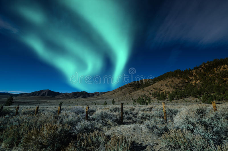 Download Northern Lights Aurora Borealis Over Trees Stock Photo - Image: 38468830