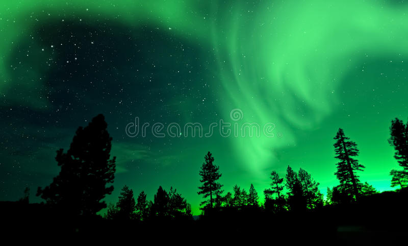 Northern Lights aurora borealis over trees stock image