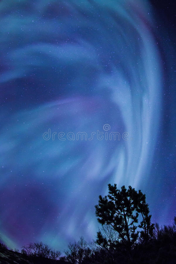 Northern lights (Aurora borealis) over Tromso stock images
