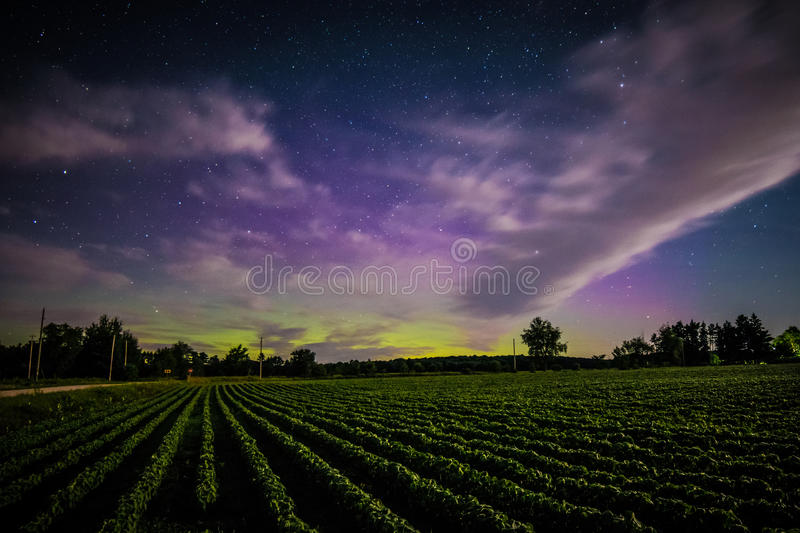 The Northern Lights royalty free stock photo
