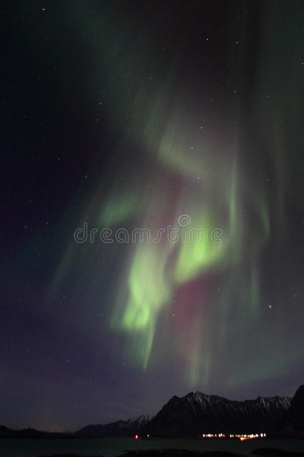 Northern Lights curtains over Nord Lofoten. Northern Light mirroring in the fjord facing Gimsoey, Lofoten islands royalty free stock images
