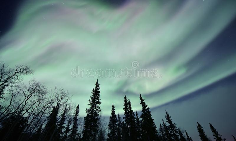 Northern lights are dancing in the sky royalty free stock photos