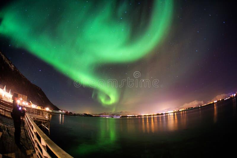 Northern Lights Lofoten, Norway royalty free stock photo