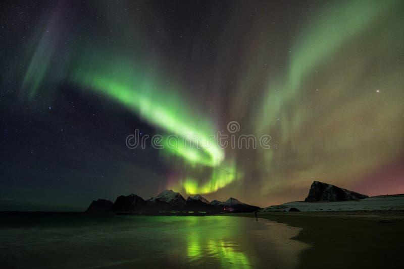 Northern Lights Lofoten, Norway stock photos