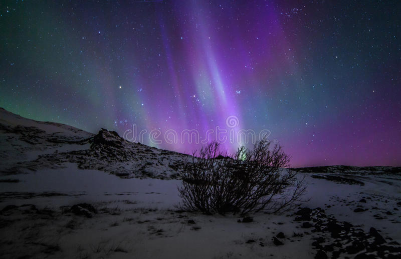 Northern Lights. During winter time in Iceland royalty free stock image