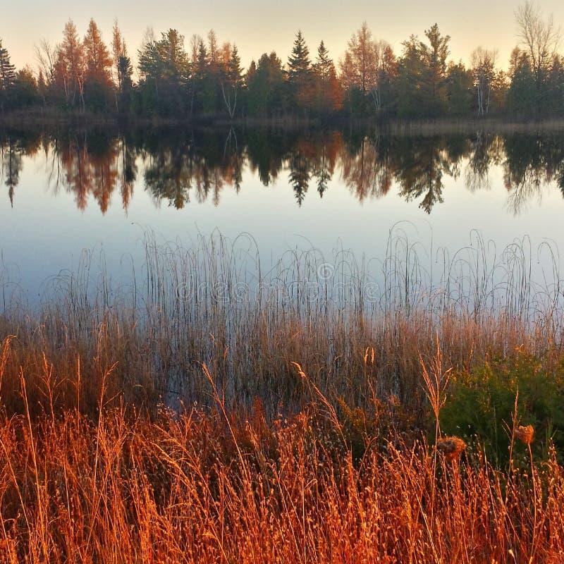 Northern michigan treeline reflections at sunset stock image