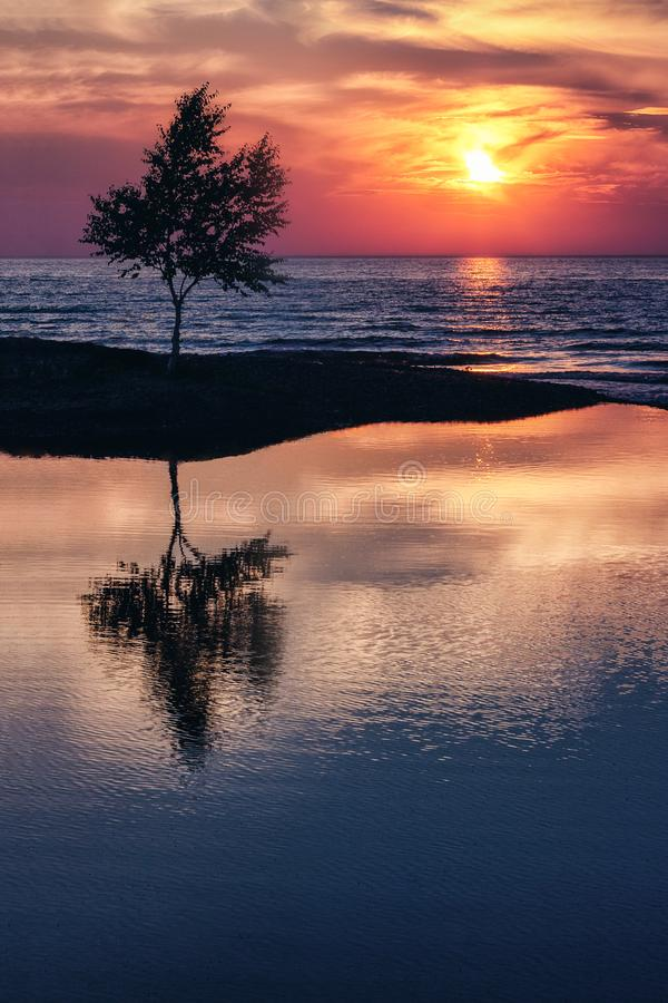 Lakeshore Sunset Silhouette at Lake Superior royalty free stock photography