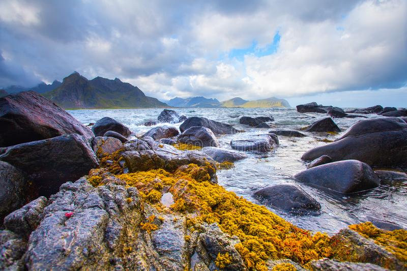 Stunning landscape of lofoten islands. Fjord with stone sides under cloudy sky. Rocks on horizon. Northern summer stock images