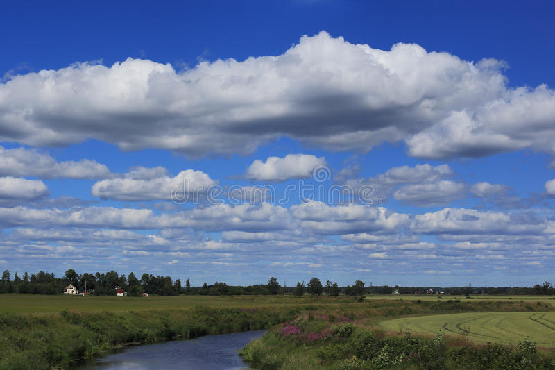 Northern Swedish landscape stock image