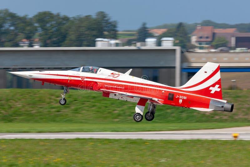 Northrop F-5E kämpeflygplan från det schweiziska laget Patrouille Suisse för flygvapenbildandeskärm royaltyfria bilder
