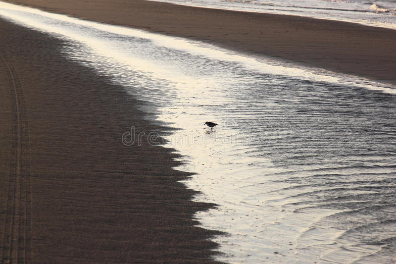Northsea near Bureblinkert at Ameland Beach, Holland stock photos