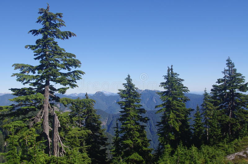 Northshore Mountains Royalty Free Stock Photography