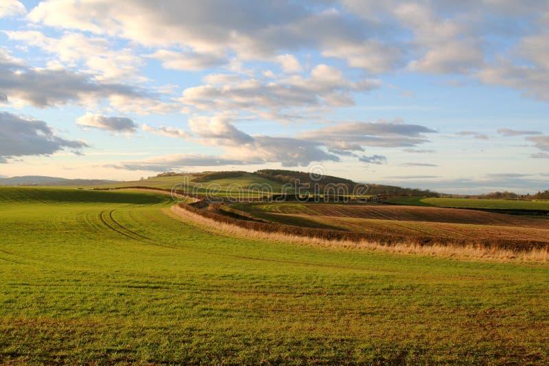 Northumberland. foto de stock royalty free