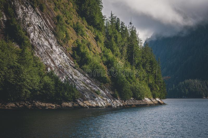 Northwest Misty Fjords Forest stock photo