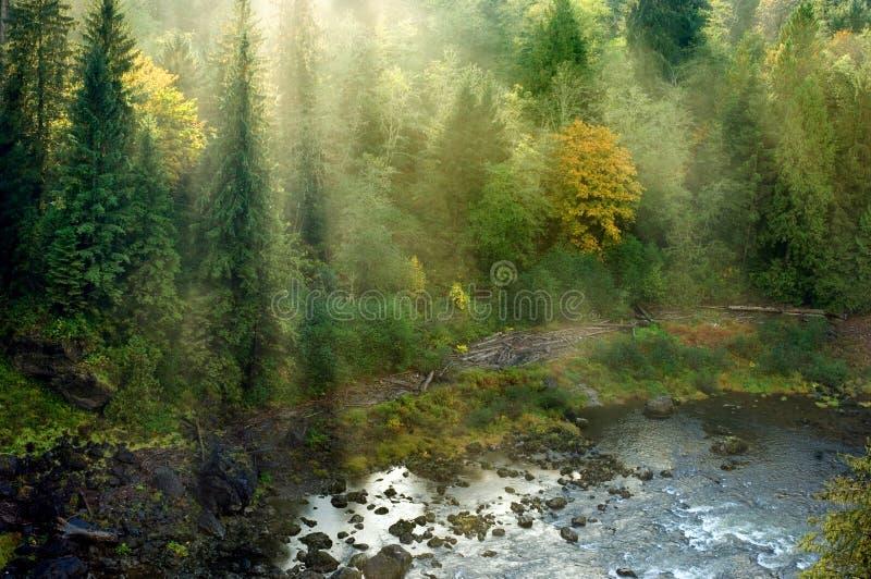 Northwestern landscape stock image