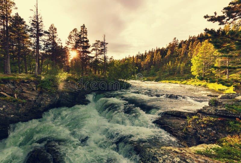 norway flod arkivbild