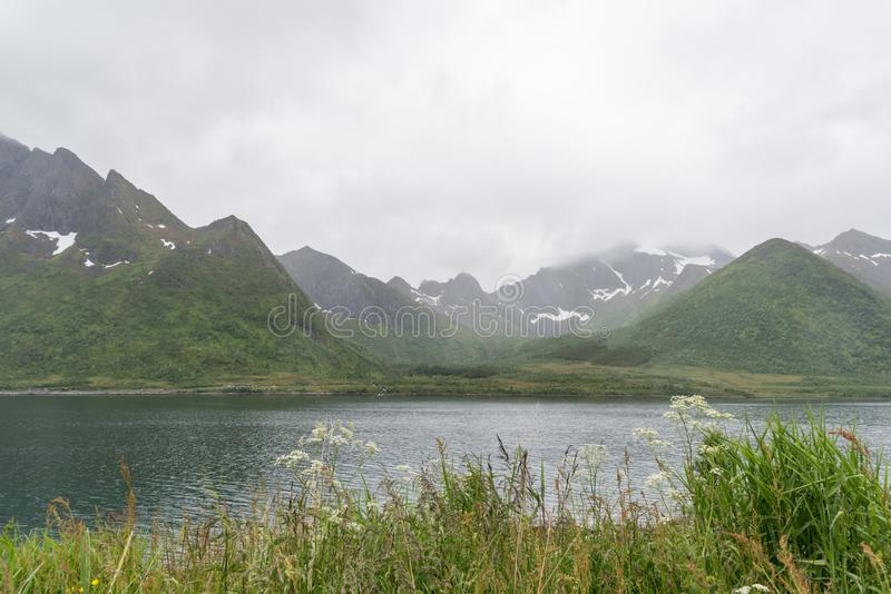 Norway Lofoten fjords - mountains covered by snow in the mid of summer royalty free stock images