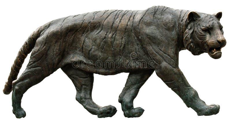 norway oslo tiger royaltyfria foton