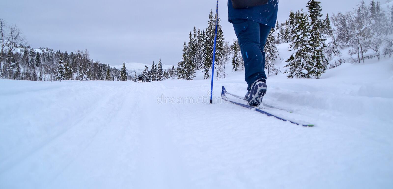 norway skidåkning royaltyfri bild