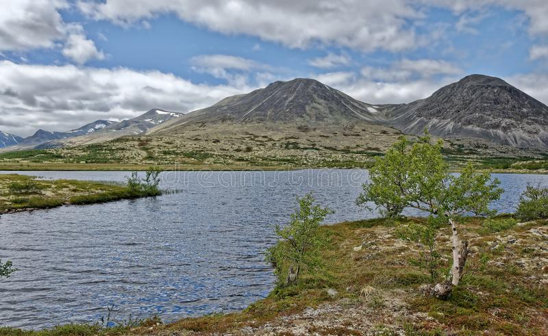Norway. Summer landscape in Rondane. stock photo