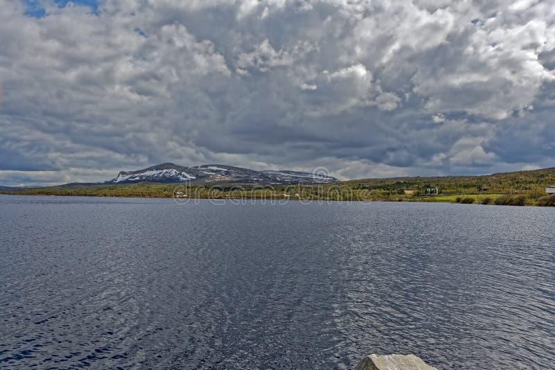 norway Ursnygga sommarlandskap i Norge arkivfoton