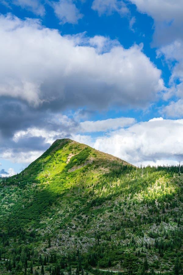 Norwegen-Durchlauf-Spur der Mount Saint Helens lizenzfreie stockfotos