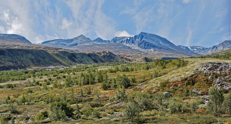 norwegen Sommerlandschaft in Rondane lizenzfreies stockfoto