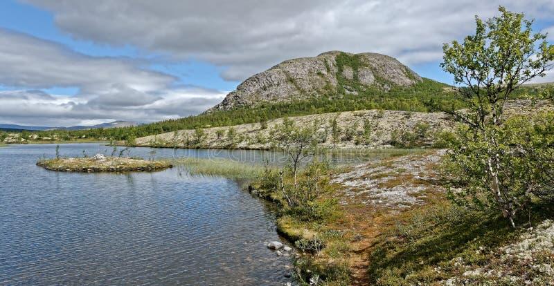 norwegen Sommerlandschaft in Rondane stockbilder