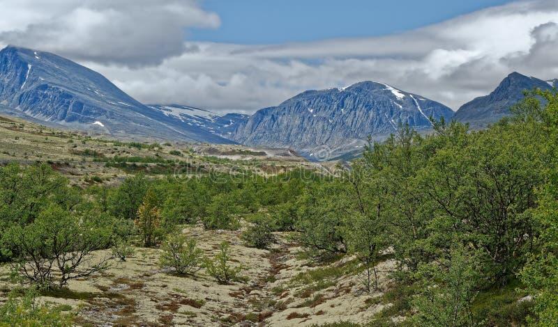 norwegen Sommerlandschaft in Rondane stockbild