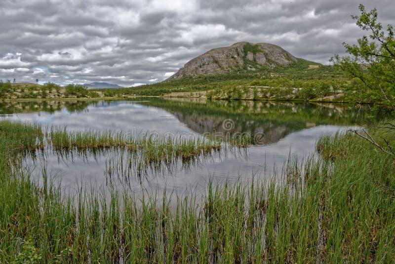 norwegen Sommerlandschaft in Rondane lizenzfreie stockfotografie