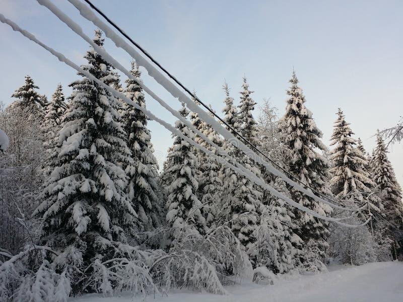 Norwegen-Winter lizenzfreie stockfotos