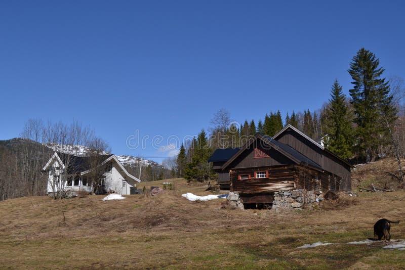 Norwegerbauernhof im Frühjahr lizenzfreie stockbilder