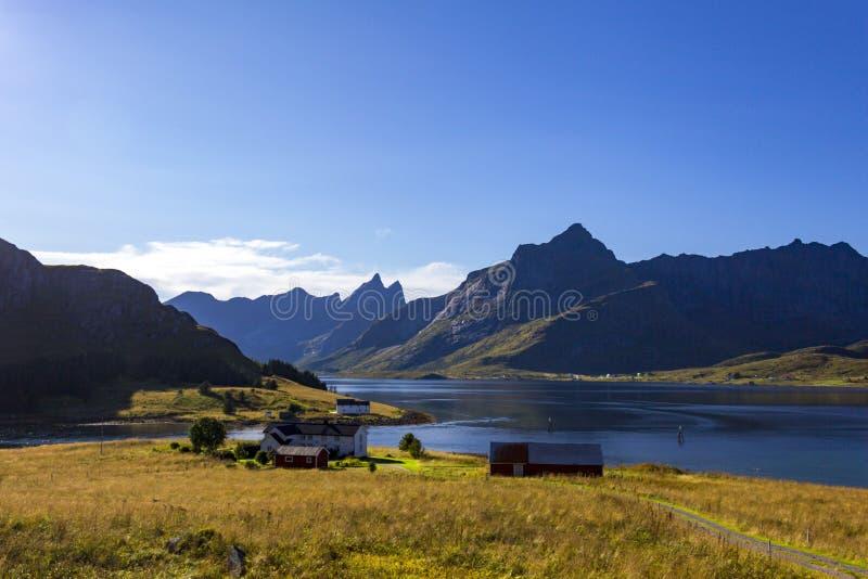 Norwegia Flakstad, Lofoten wyspy - obraz stock