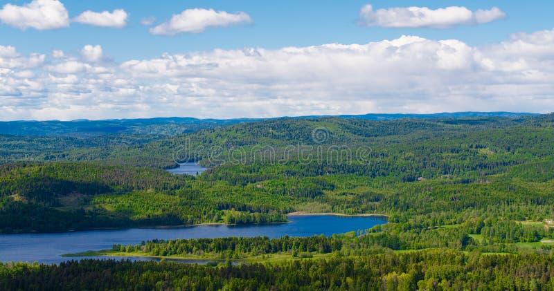 Download Norwegia jeziora i las obraz stock. Obraz złożonej z norwegia - 28955719