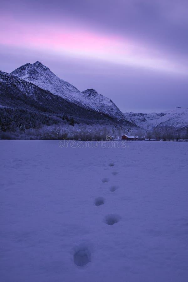 Norwegia oksendal dolina obrazy royalty free